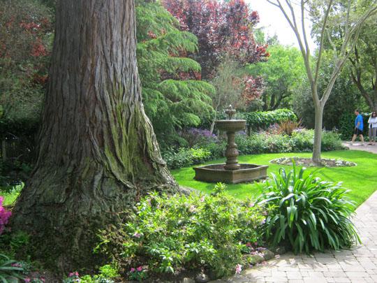 Circlular drive portion of the garden in an Atherton home on the 2011 'Open Garden Days' Tour